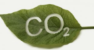 Braskem reduz emissões de CO2 na produção de Plástico Verde