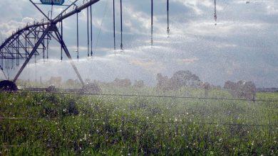 Foto de Uso de plástico reduz consumo de água no Agronegócio