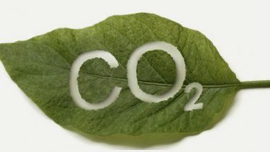 Foto de Braskem reduz emissões de CO2 na produção de Plástico Verde