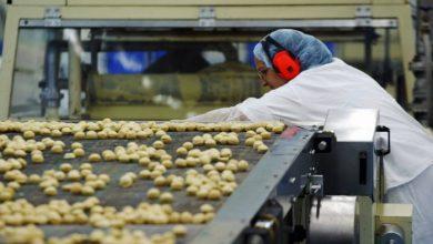 Foto de Fispal Tecnologia e SENAI-SP anunciam projeto com desenvolvimento de soluções para indústria do setor de alimentos