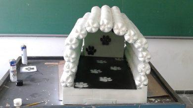 Foto de Alunos de escola pública criam casinhas com garrafas pets para proteger animais de rua do frio