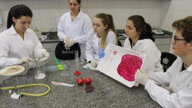 Foto de Plástico comestível é desenvolvido por alunos