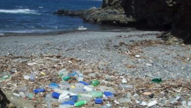 Foto de Fórum Setorial dos Plásticos busca soluções para problema mundial de poluição dos mares