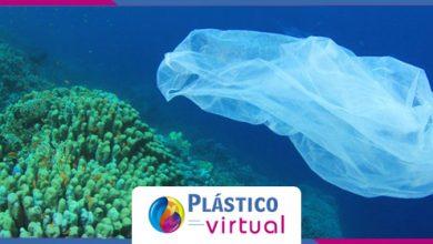 Foto de Institutos e navegador brasileiro realiza webinar sobre combate ao lixo nos mares