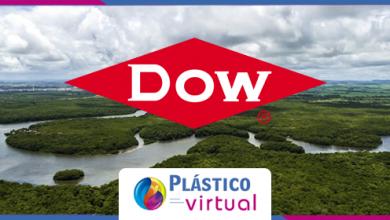 Foto de Companhia lança projeto para promover a extração sustentável de bioativos da floresta Amazônica