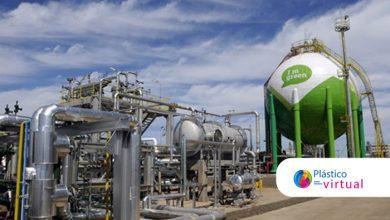 Foto de Empresas estudam investimento conjunto na produção de bioetileno para biopolietileno na Tailândia